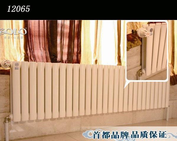 宝隆优雅系列12065抗菌散热器12065