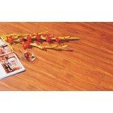 标王强化复合地板全健康模压系列B8120-巴西红
