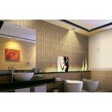 金舵内墙砖LOOK360°(瓷片)完美生活系列DA6014(