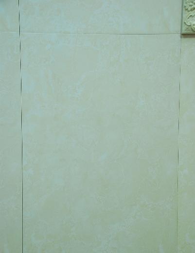威登堡内墙亮光砖46984698