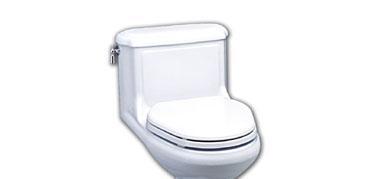 美标CP-2036安提克横排水加长连体座厕CP-2036