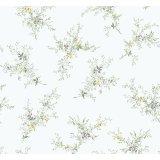 格莱美VS3313香草天空壁纸