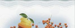 陶尔斯瓷砖浪漫・樱花印象系列TSA451012H-02TSA451012H-02