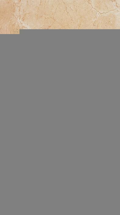 赛德斯邦凯撒大帝系列CLB3026030K22内墙釉面砖CLB3026030K22