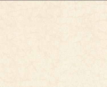 陶尔斯瓷砖TT82024A