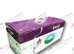 紫荆花时尚家园PU木器漆清底漆SA99N