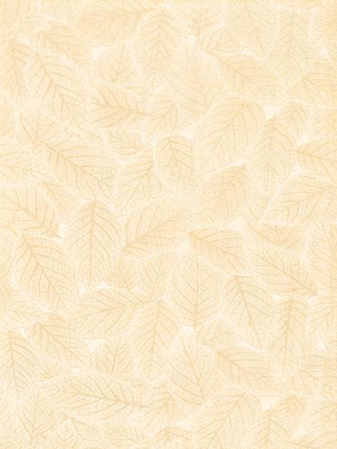 鹰牌简爱系列秋意S1P1-27内墙釉面砖S1P1-27