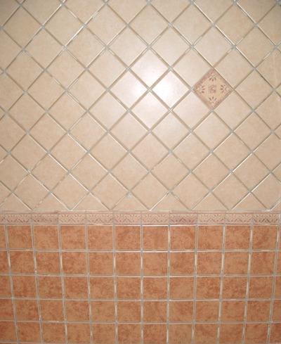 圣龙内墙砖-10051005