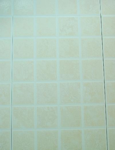 金科瓷砖内墙亚光砖35073507