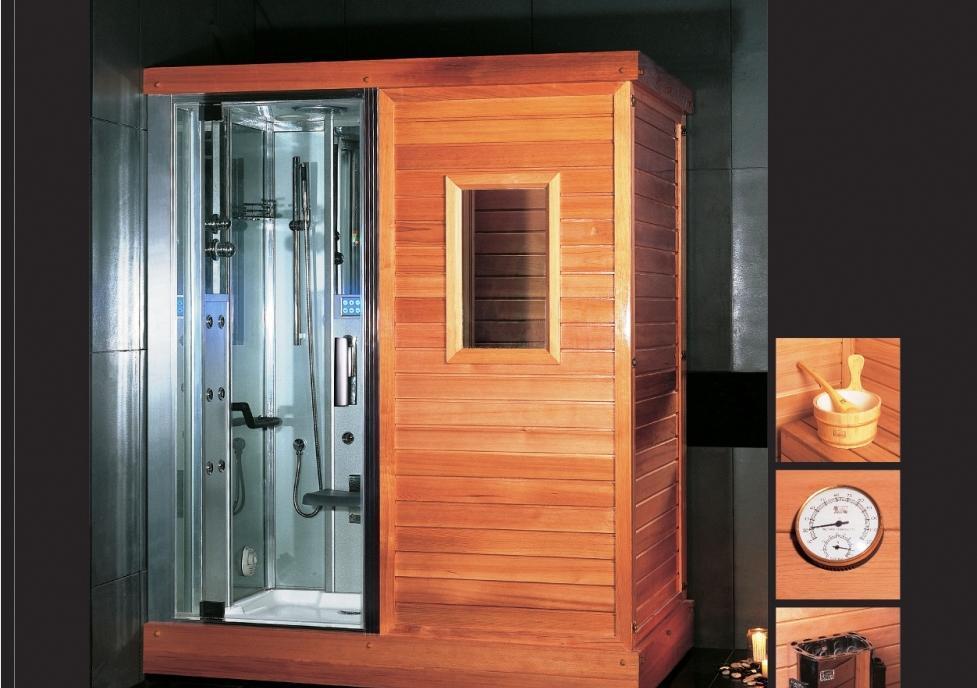 益高-干湿蒸汽房DS201DS201