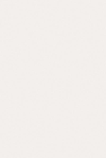 鹰牌瓷砖真韵石系列内墙砖E0008E0008
