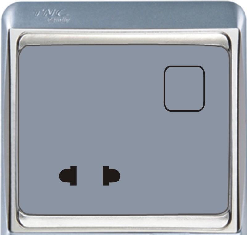 TNC A系列二极插座(银色)