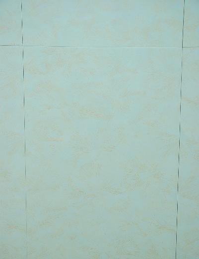 威登堡内墙亮光砖4612946129
