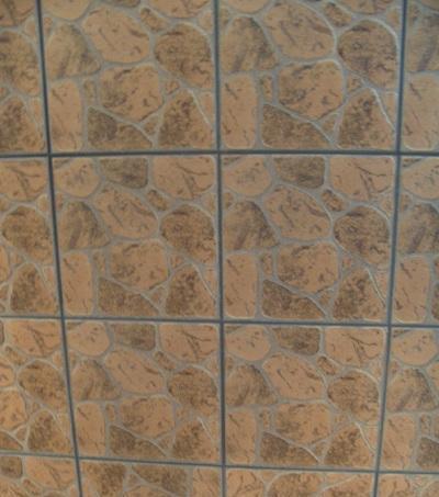 马可波罗内墙砖-DTC-3P16DTC-3P16