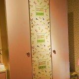 我爱我家儿童家具FD06A-A*2+C*1三门衣柜
