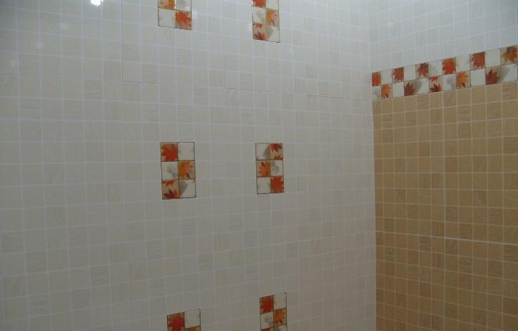 维罗生态砖-墙砖5