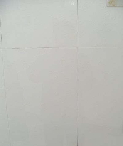 利家居内墙砖-L48019L48019