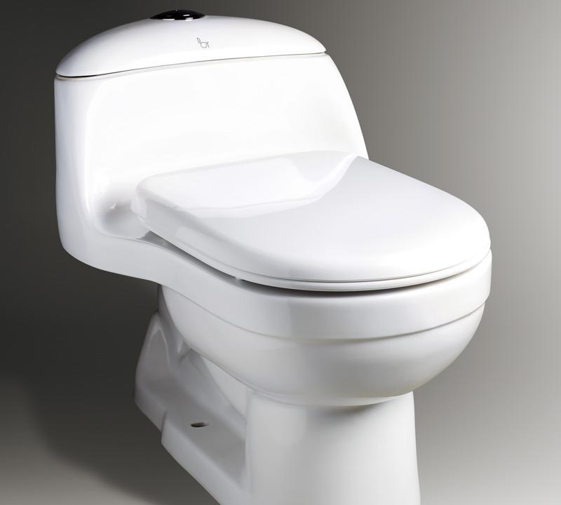 乐伊马桶Toilet贝加尔系列T110ST110S