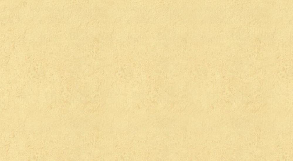 格莱美184-8维卡壁纸