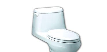 美标CP-2089.003迈阿密加长型抗菌连体座厕CP-2089.003