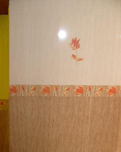 金舵内墙砖-DA6014
