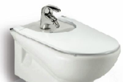 乐家卫浴魅力系列挂墙妇洗盆355357..0355357..0