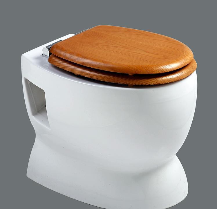 乐伊马桶Toilet玛哈系列T116V