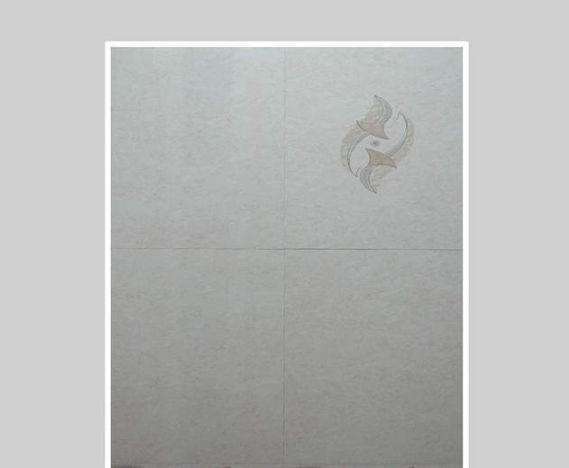 新辉雅内墙砖45A73#45A73#
