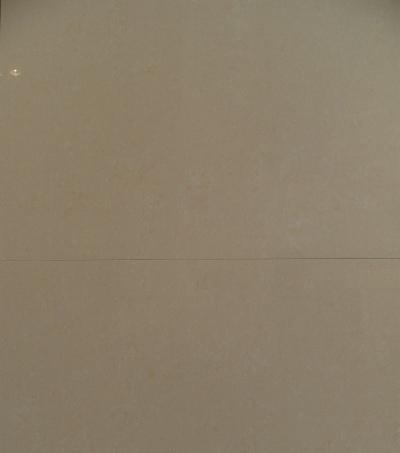 能强瓷砖A6WT829
