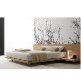 维玛CB068板式床