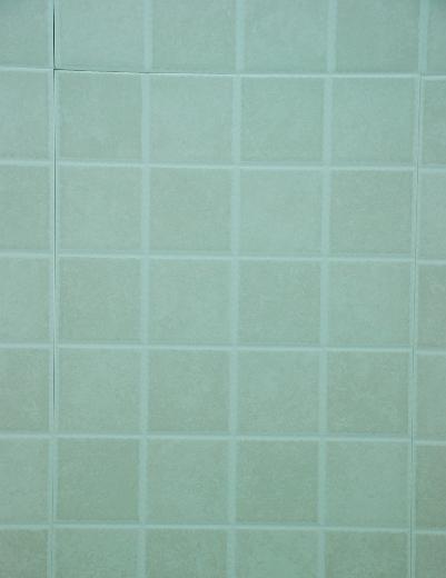 威登堡内墙亚光砖4612546125
