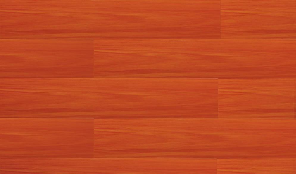 北美枫情炫彩主义系列天堂鸟强化复合地板<br />天堂鸟