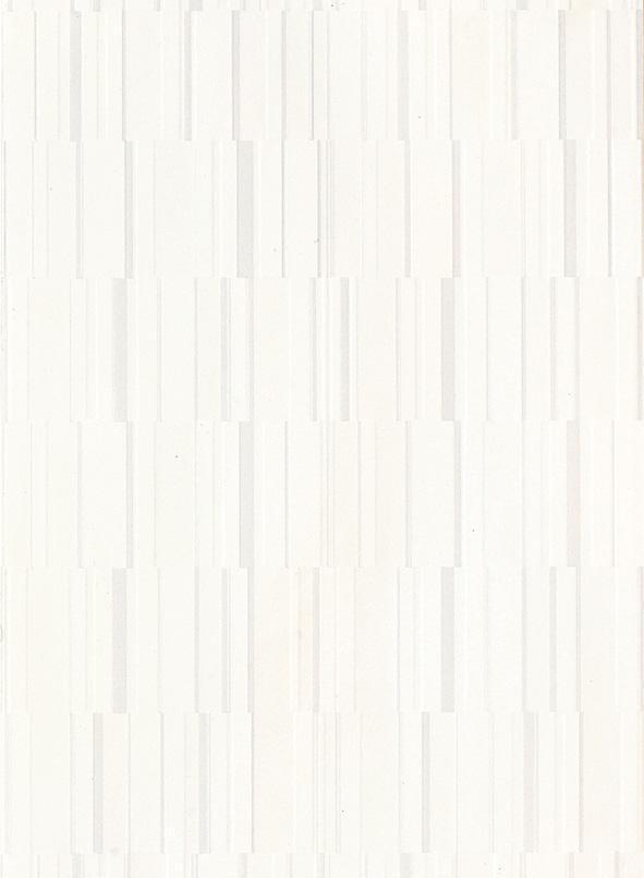 鹰牌简爱系列S1P2-56内墙釉面砖(56.57)S1P2-56