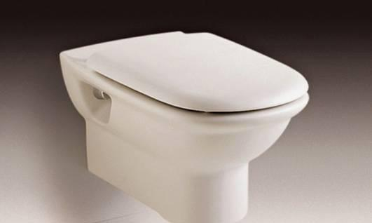 乐家卫浴吉拉达系列挂墙座厕(阻尼欧乐盖板)3-463-46467..0