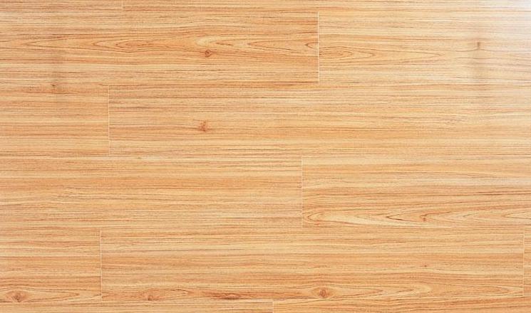 标王强化复合地板运动模压系列B2040-北美红杉