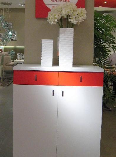 兴利鞋柜TKX02TKX02