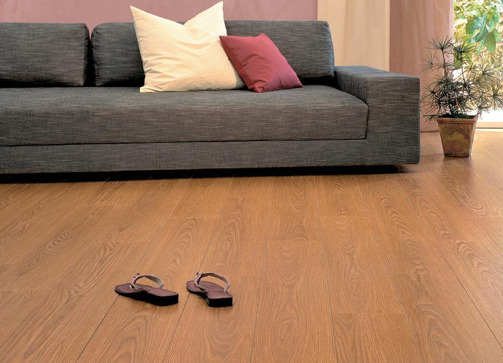 爱格强化地板田园系列CEI220温索尔金橡木