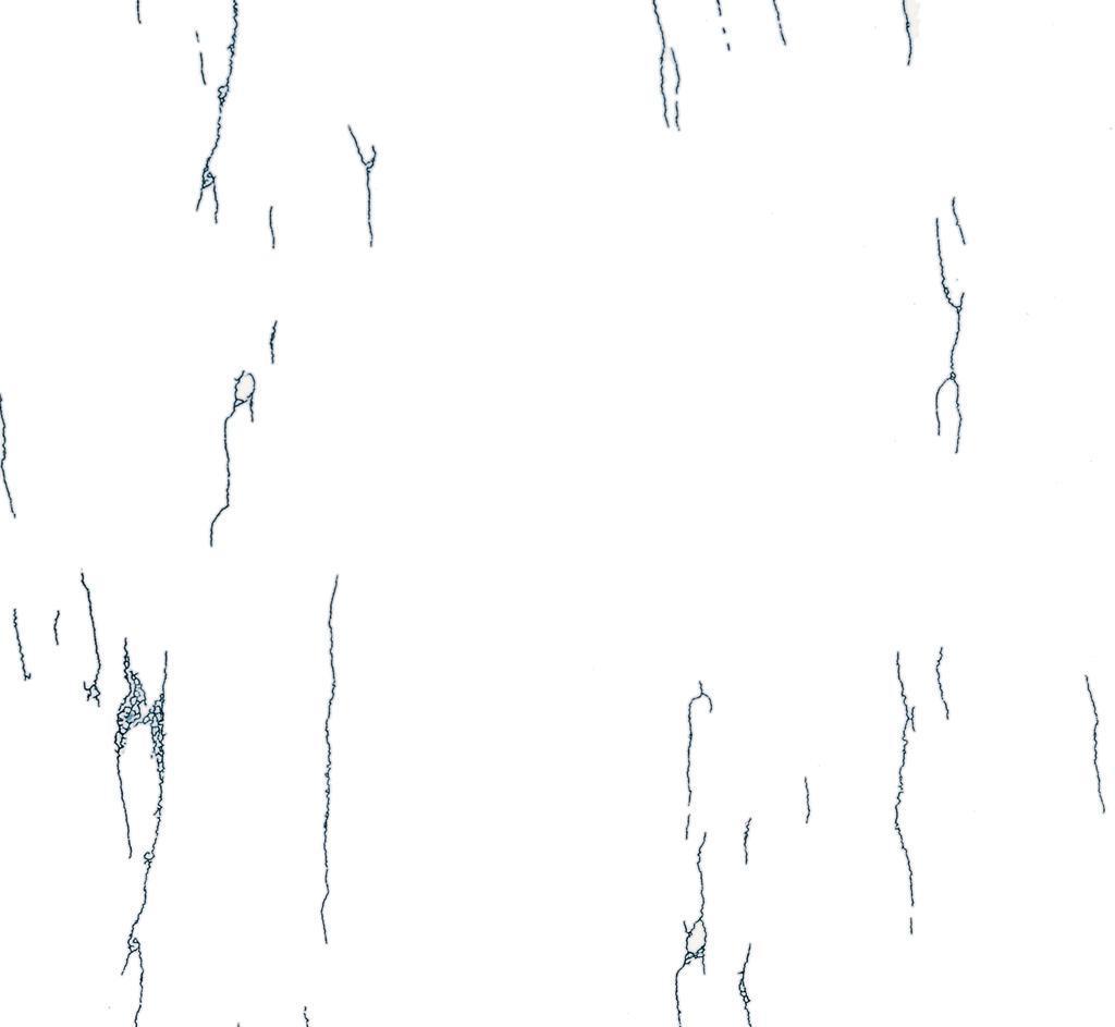 维罗地面抛光砖雪莲花系列C+XAP007(1000×1000