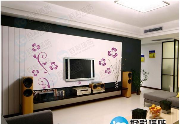 好彩电视墙贴HC-LJ-DSQ-0902-02(绽放)