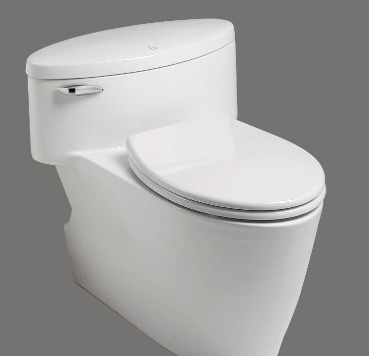 乐伊马桶Toilet维也纳系列T101CT101C