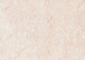 维罗地面抛光砖各拉丹东系列YQP005(800×800mm)