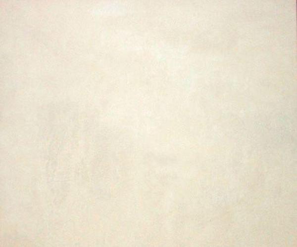 柏丽莎4548釉面地砖
