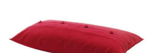 宜家靠垫套-爱克托-利比(红色)爱克托-利比