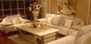 丹尼诗-A19沙发1+4+柜A19