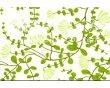 欧神诺-花姿系列-墙砖花片YF530H1(300*450mm)