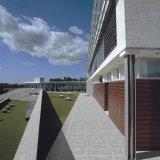 意特陶地面玻化砖超大规格系列HP2601(600×1200