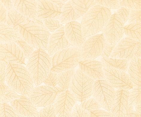 鹰牌简爱系列秋意D0P0-C9内墙釉面砖D0P0-C9