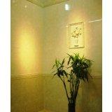 陶瓷-磁砖-外墙砖-威登堡-4698/99