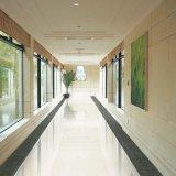 意特陶地面玻化砖超大规格系列N11203(1200*1200