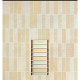 陶尔斯瓷砖惊艳秀色芙蓉系列TSA451006H